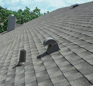 Shingle roof with external terminations